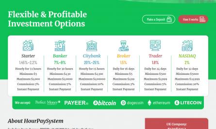 Hourpaysystem.com Homepage Image