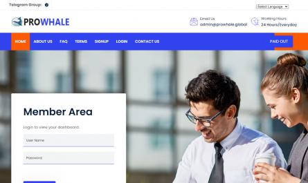 Prowhale.global Homepage Image