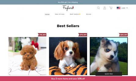 Faylara.com Homepage Image