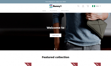 Sunny1.store Homepage Image